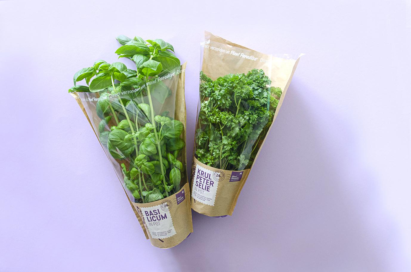 Verpakkingen van de verse potkruiden van Plant Paradise